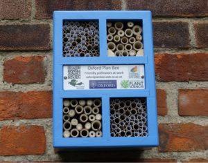 Bee hotel and hedgehog igloo